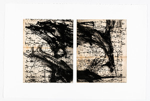 Point, Counterpoint II, Polymer Plate Etching with Chine Colle'
